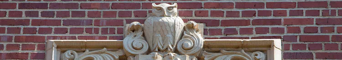 Architectural embellishment of an owl on a side of a building